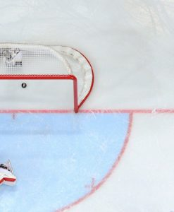 Hokeja formas