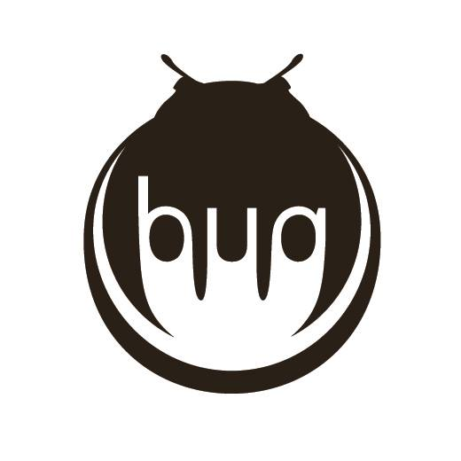 Bug wooden Accessories